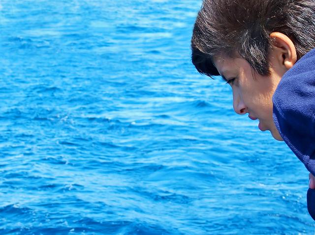 Ученые обнаружили гены, ответственные за возникновение морской болезни