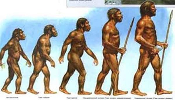 теория Дарвина